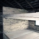 auschwitz sleeping bunks