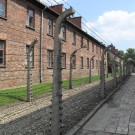 auschwitz concentrarion camp blocks