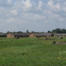 auschwitz labour camp